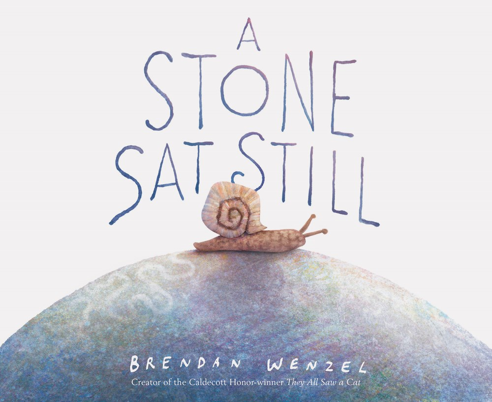 Cover of A Stone Sat Still