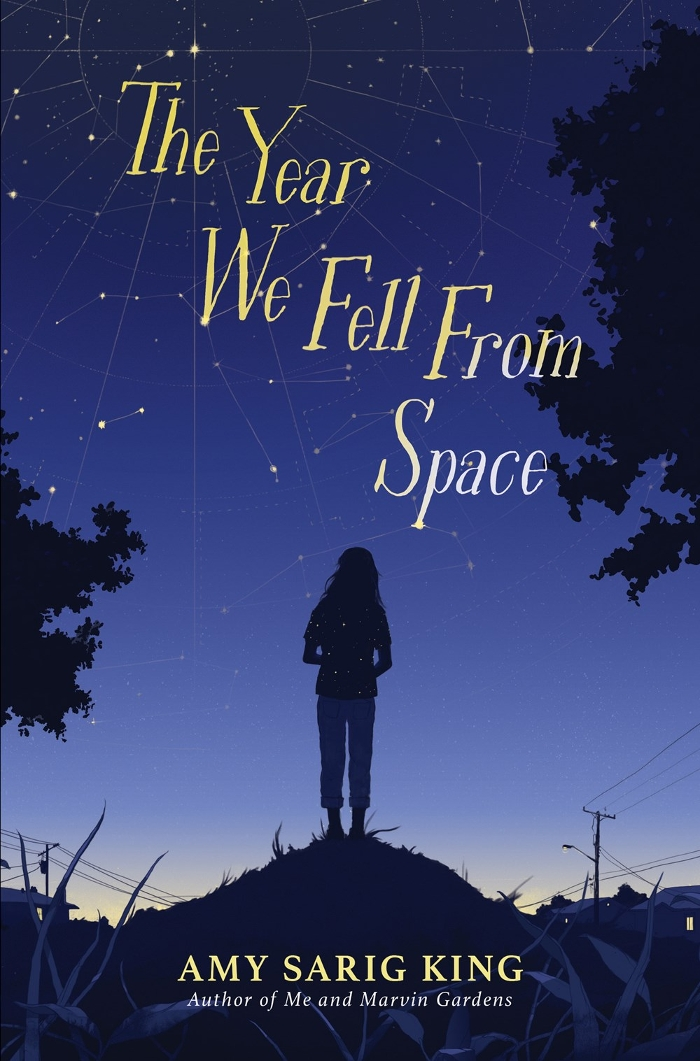 Review of The Year We Fell from Space