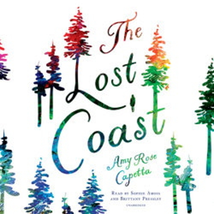 Review of The Lost Coast audiobook
