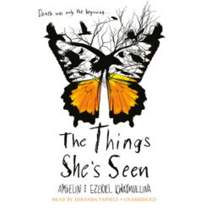 Review of The Things She's Seen audiobook