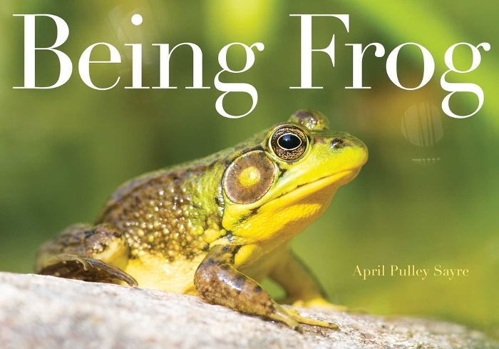 Review of Being Frog