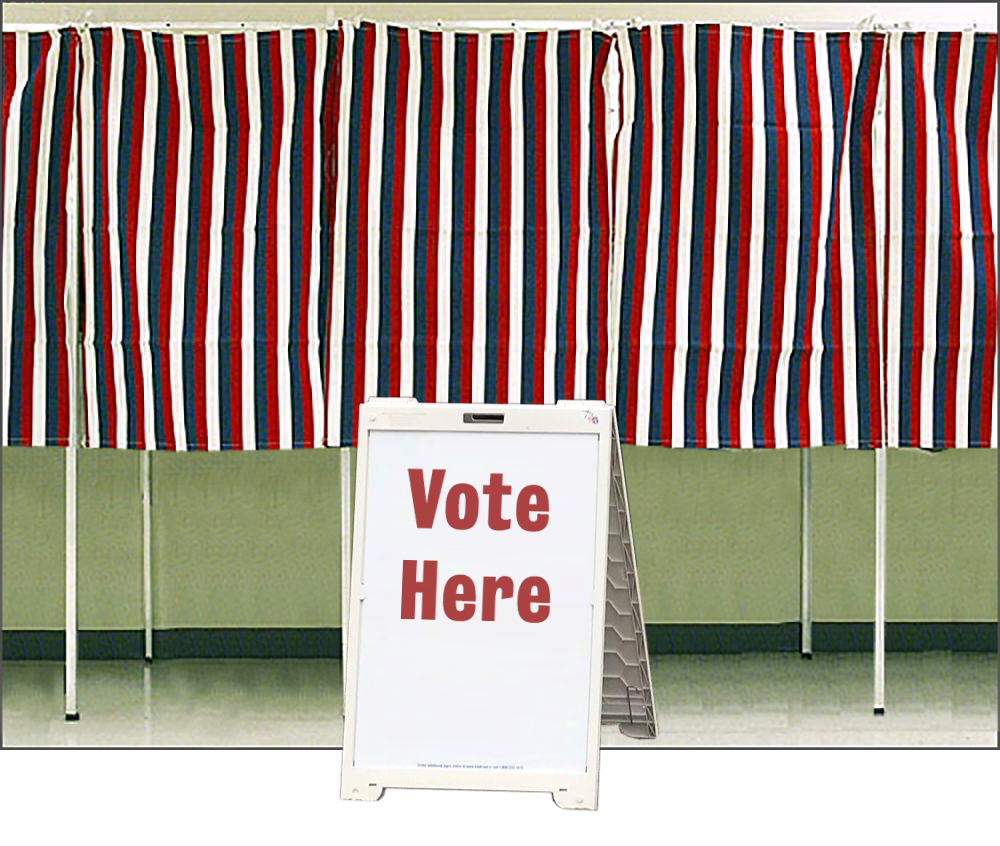 It's Time to Vote! — Calling Caldecott 2021 ballot is now open
