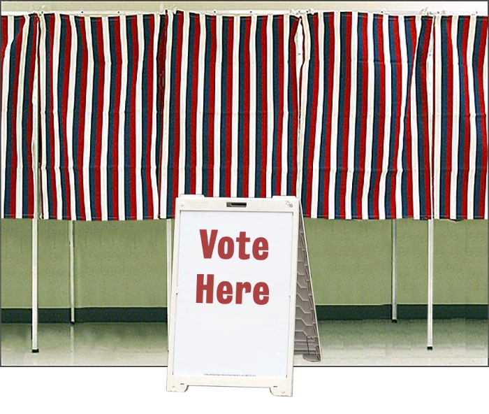It's Time to Vote! — Calling Caldecott 2020 ballot is now open
