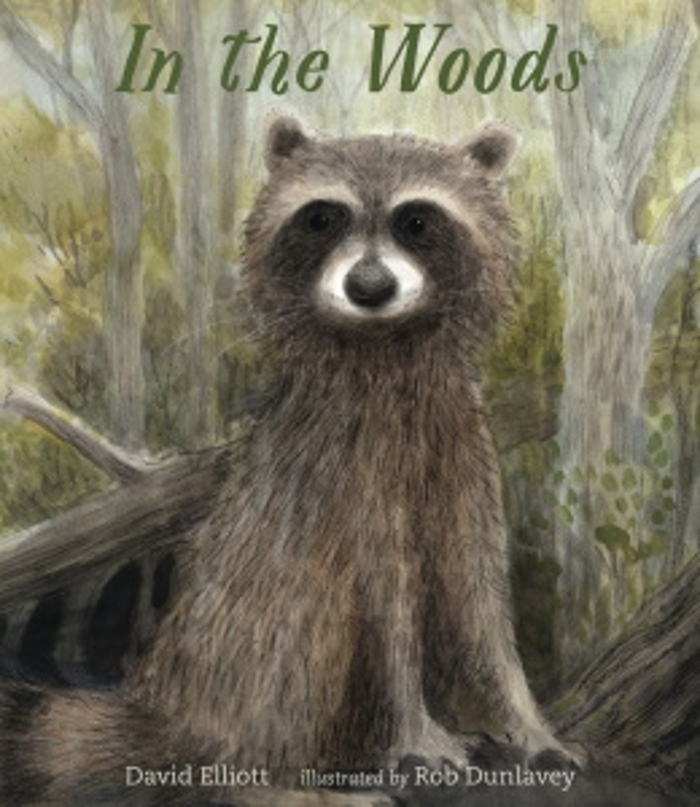 Review of In the Woods