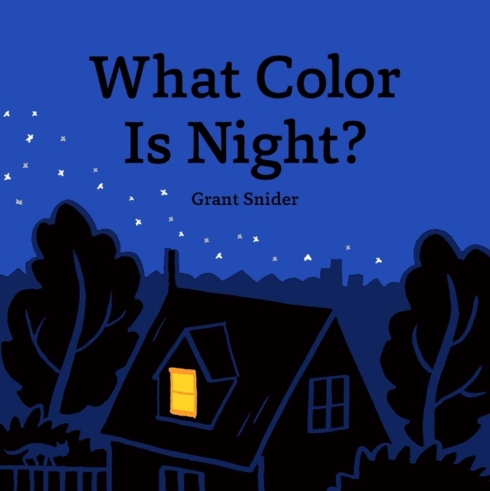 Review of What Color Is Night?