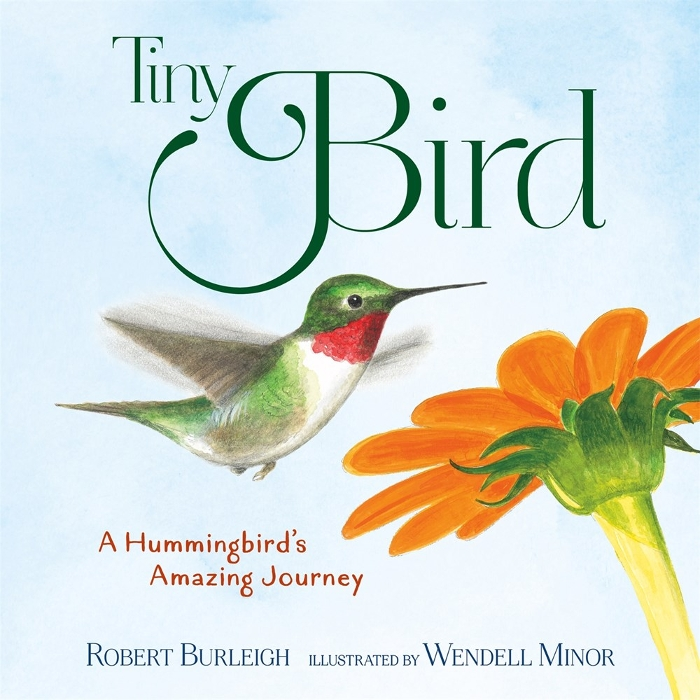 Review of Tiny Bird: A Hummingbird's Amazing Journey
