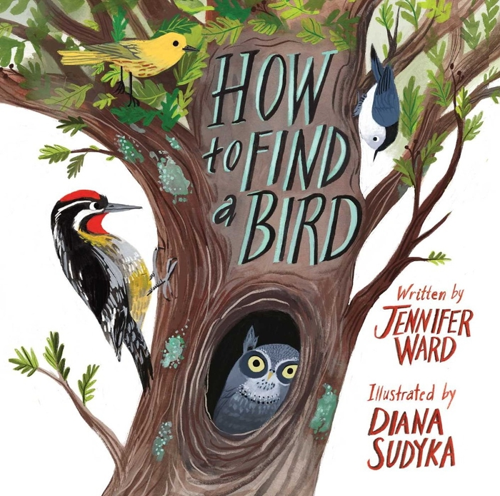 Review of How to Find a Bird