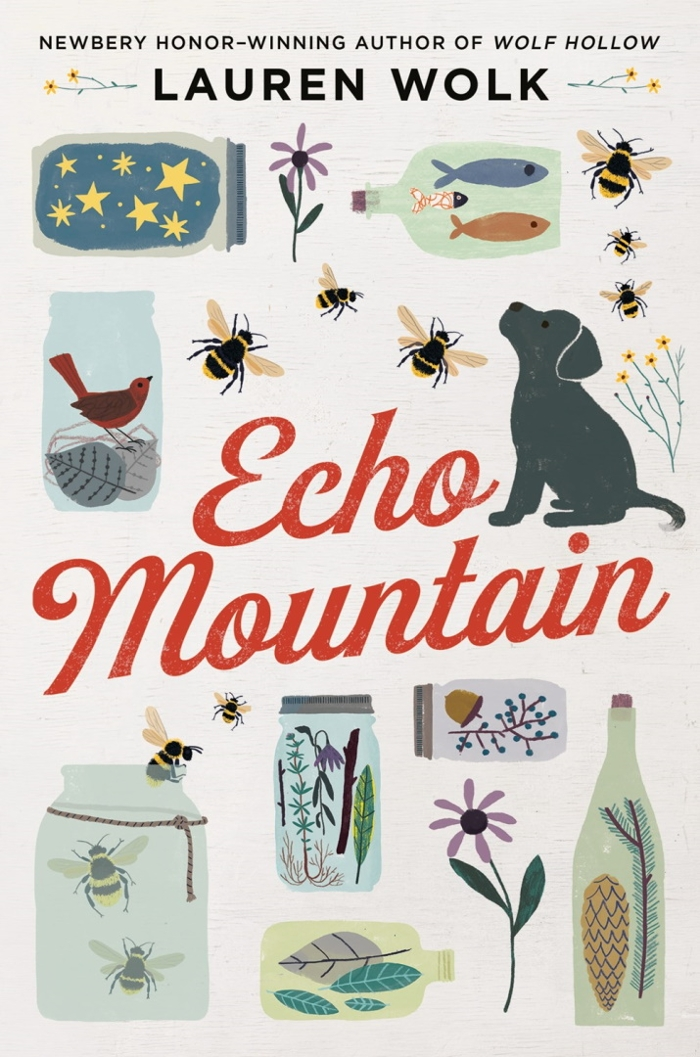 Review of Echo Mountain