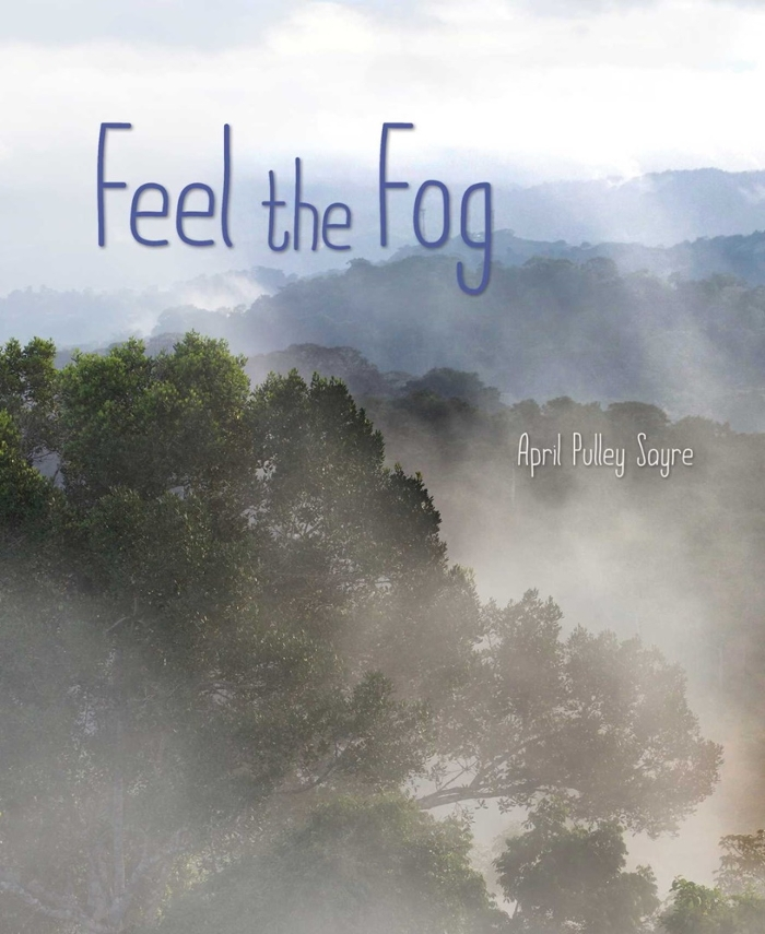Review of Feel the Fog