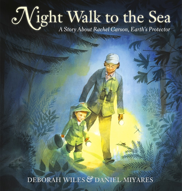 Review of Night Walk to the Sea