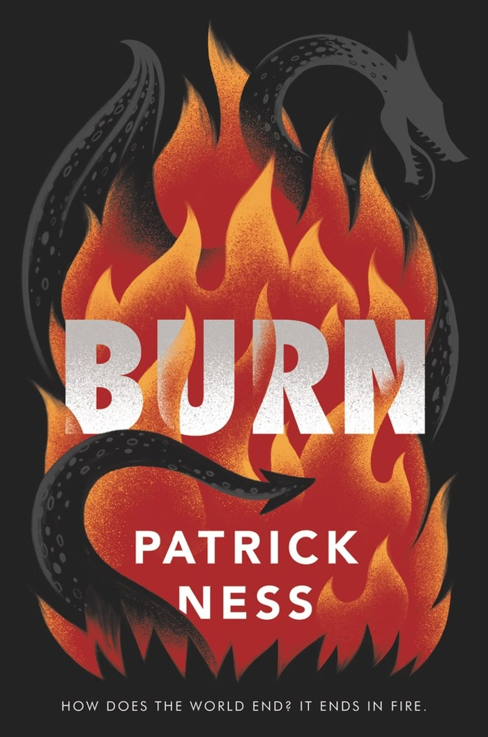 Review of Burn