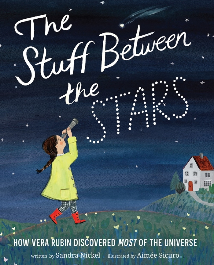 Review of The Stuff Between the Stars: How Vera Rubin Discovered Most of the Universe