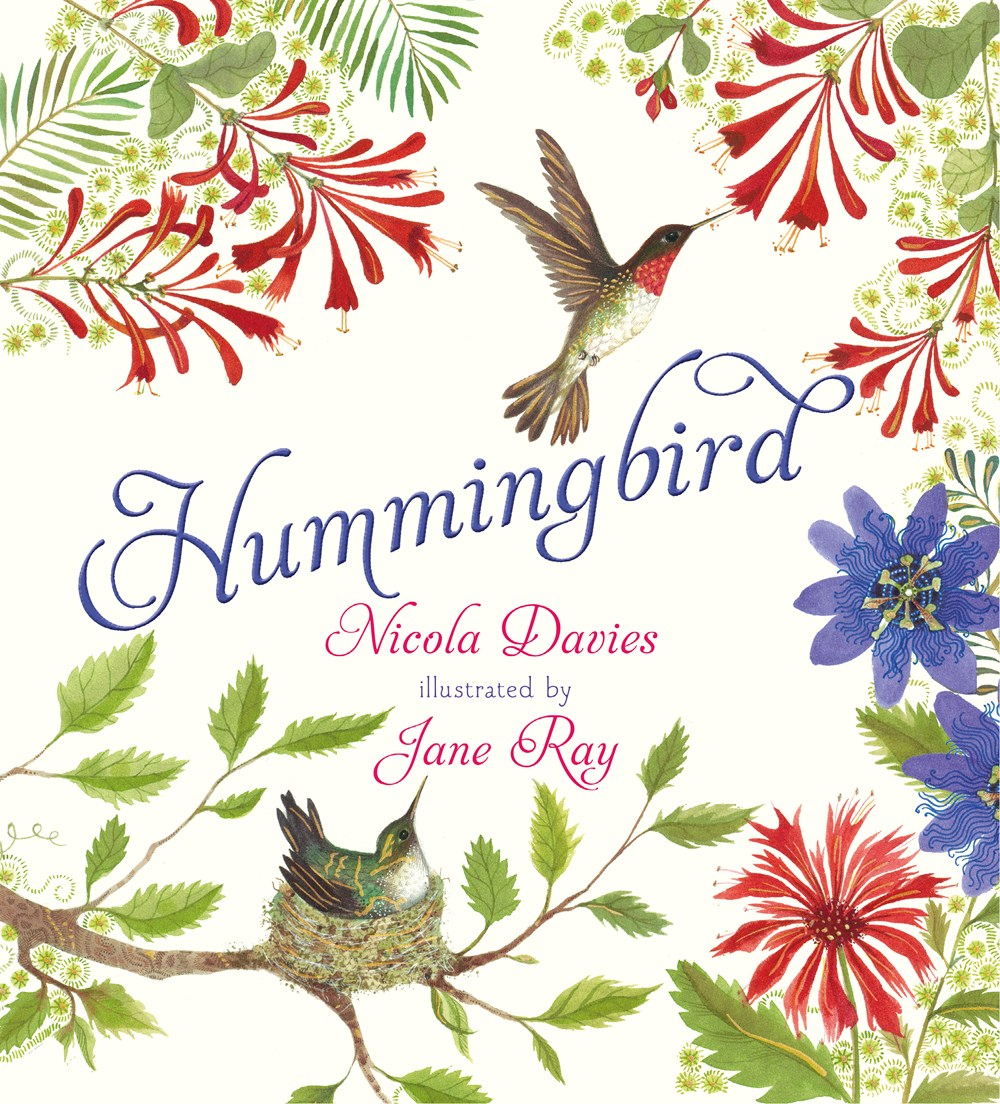 Review of Hummingbird